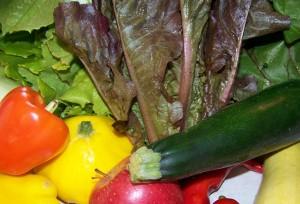 rawfood diet