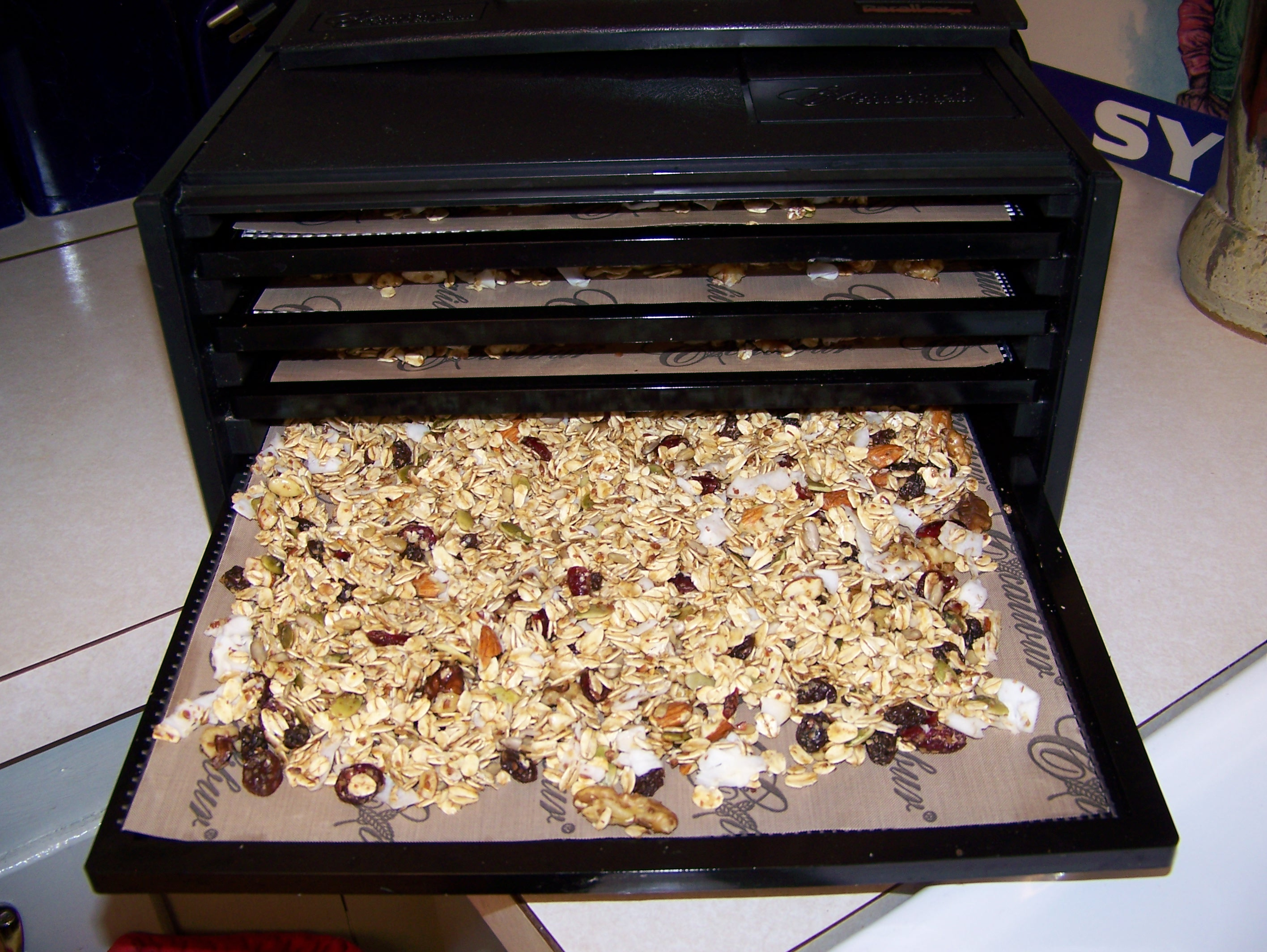 Homemade Granola Using My Excalibur Food Dehydrator Healthy Living