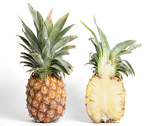 Pineapple and its cross section